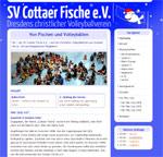 Bildschirmfoto von volleyballfische.de